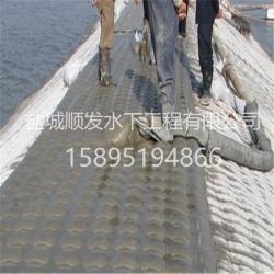 浙江模袋混凝施工